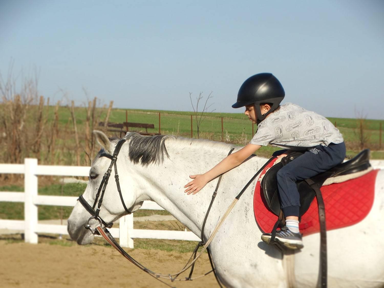 Clubul sportiv Equester - lectii de calarie copii Iasi