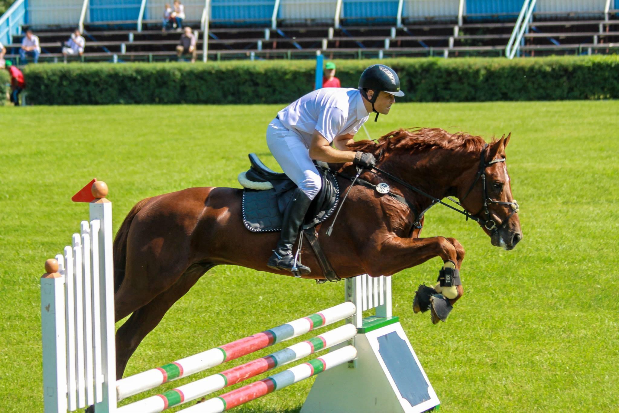 Equester club sportiv de echitatie Iasi 5