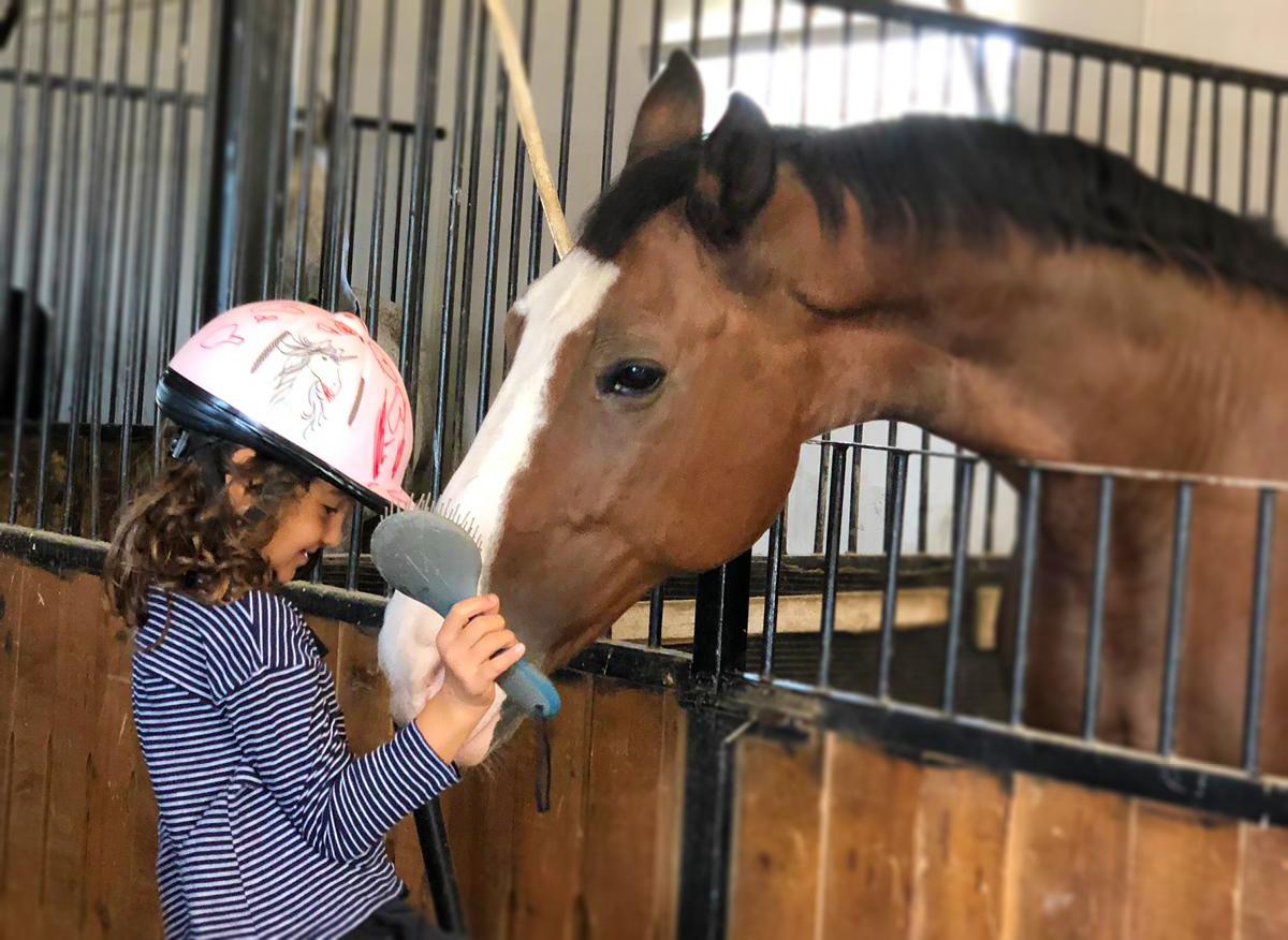 Rival, caii clubului Equester