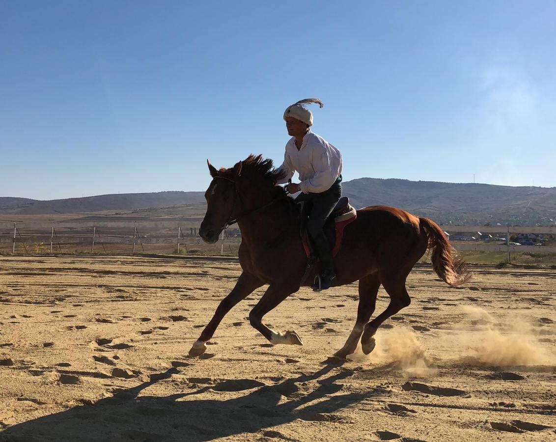 Simplon - lectii de echitatie - Equester