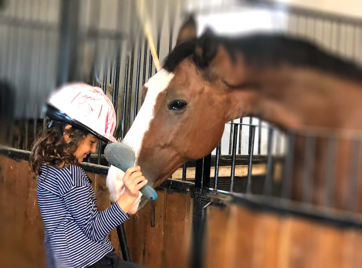 Terapia cu cai la copii - Equester Iasi
