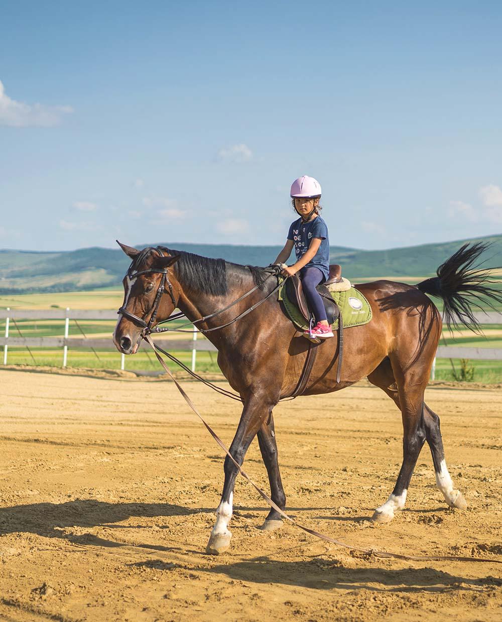 Markanz-lectii de calarie copii-Equester